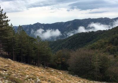 Jesień na Korsyce.